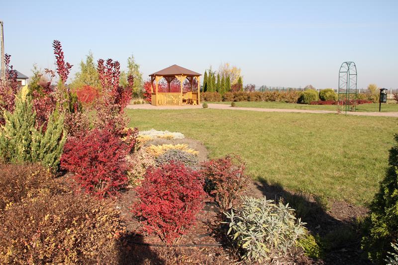 Jesień w Golądkowie